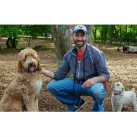 dog trainer mn minneapolis minnesota 55416 With dog training mn