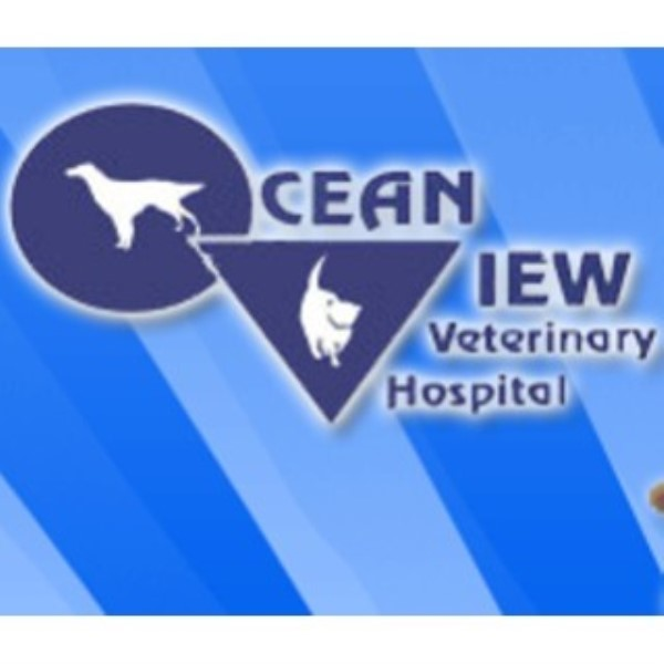 Ocean View Veterinary Hospital Pacific Grove California Picture