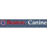 Boston Canine Inc Peabody Massachusetts Logo