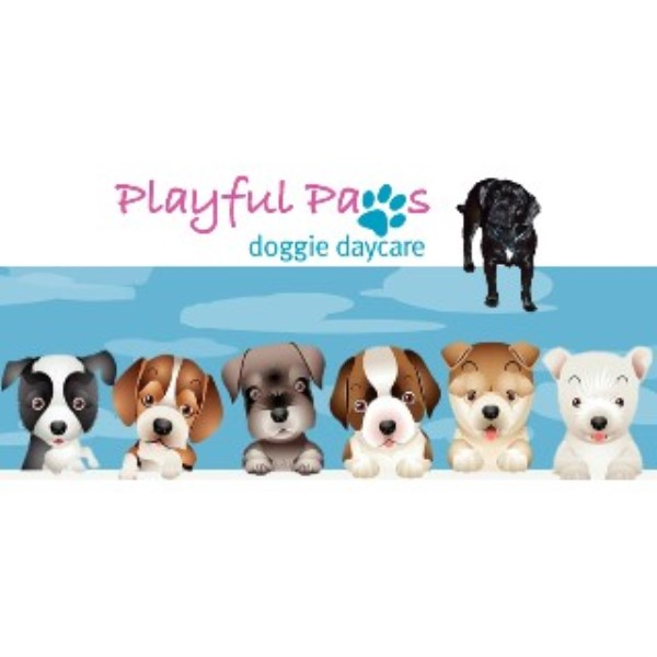 Playful Paws Doggie Daycare Salem