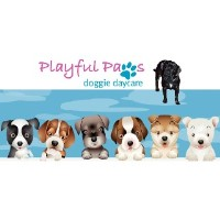 Playful Paws Doggie Daycare Salem Massachusetts Logo