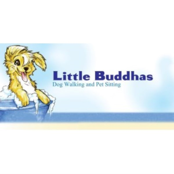 Little Buddhas Dog Walking & Pet Sitting dog boarding services in San Francisco, California