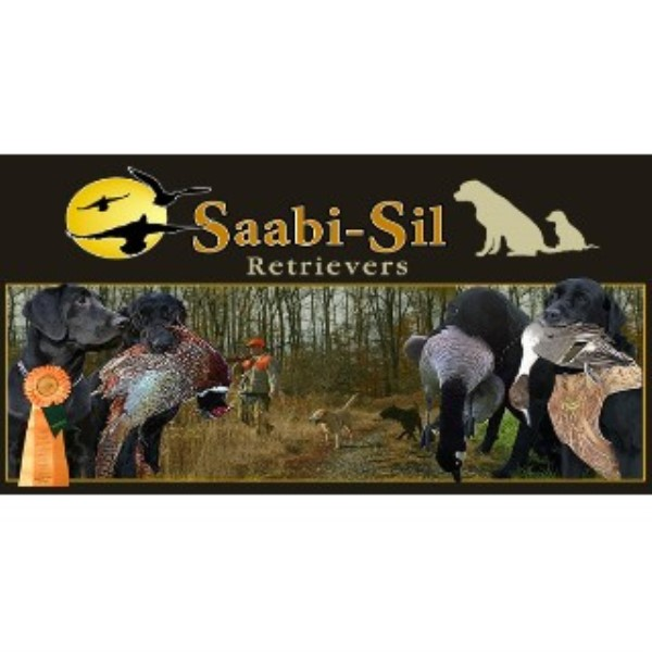 Saabi-Sil Retrievers Dallas Pennsylvania Logo