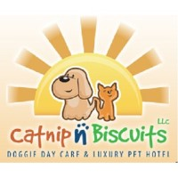 Catnip -N- Biscuits, Llc Savannah Georgia Logo