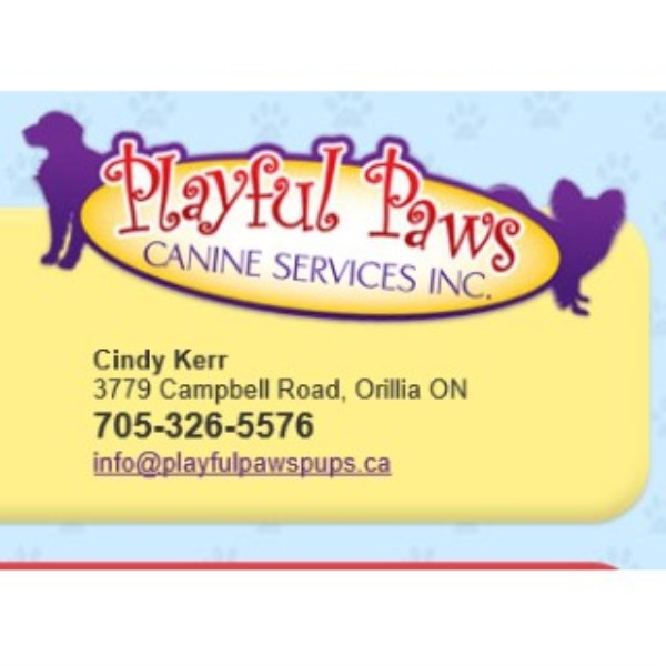 Playful Paws Canine Services Inc Orillia