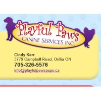 Playful Paws Canine Services Inc Orillia Ontario Logo