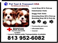Pet Taxi and Transport USA Ruskin, (Tampa Bay) Florida Logo