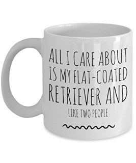 Flat-Coated Retriever Mug - All I Care About Is My Flat-Coated Retriever And Like Two People - Flat-Coated Retriever Lover Gift - Unique 11 oz Ceramic Coffee or Tea Cup for Flat Coat Mom