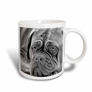 3dRose Dogue de Bordeaux Ceramic Mug, 15-Ounce