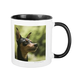Miniature Pinscher MinPin Coffee Mugs for Men Birthday Presents Motivational Mug Cup Funny Ceramic Cup 11oz Mugs Gifts