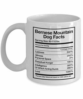 Bernese Mountain Dog Facts Coffee Mug Gift, White, 11 oz