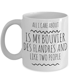 Bouvier des Flandres Mug - All I Care About Is My Bouvier des Flandres And Like Two People - Bouvier Lover Gift - Unique 11 oz Ceramic Coffee or Tea Cup for Bouvier Mom