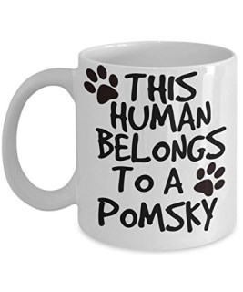 Pomsky Mug - White 11oz Ceramic Tea Coffee Cup - Perfect For Travel And Gifts