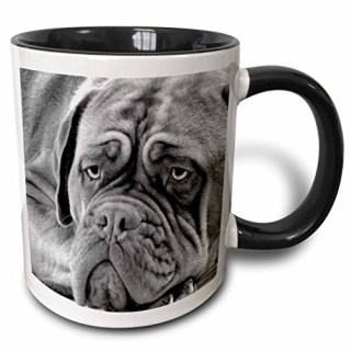 3dRose 3dRose Dogue de Bordeaux - Two Tone Black Mug, 11oz (mug_11322_4), , Black/White