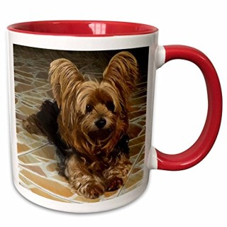 3dRose 201113_5 a Cute Yorkshire Terrier Dog with a Drawing Effect Two Tone Mug, 11 oz, Red