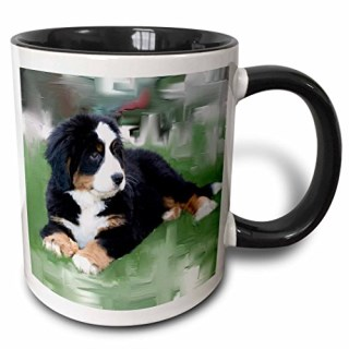 "3dRose mug_4038_4 ""Bernese Mountain Dog Two Tone black"" Mug, 11 oz, Black/White"