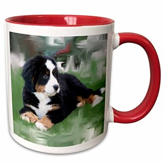 "3dRose mug_4038_5 ""Bernese Mountain Dog Two Tone Red"" Mug, 11 oz, Red/White"