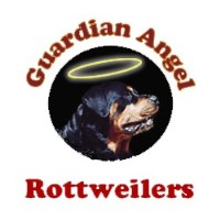 Guardian Angel Rottweilers