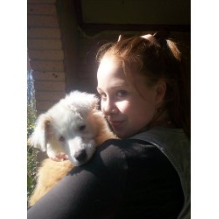 English Shepherd breeder Tylertown 12342