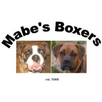 Mabe's Ckc Boxers