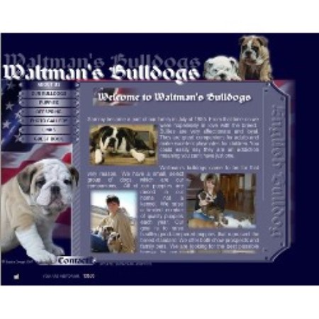 English Bulldog breeder Wichita 15673