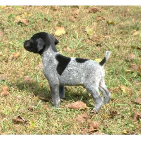 Shady Meadows Kennel German Shorthaired Pointer Breeder