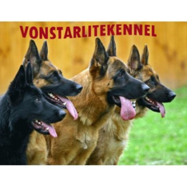 German Shepherd Dog Breeder 25262