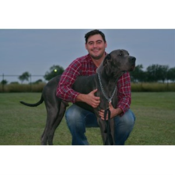 Great Dane breeder Port Lavaca 22506