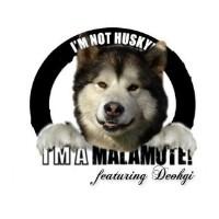 Dog Breeder Windsor Ontario