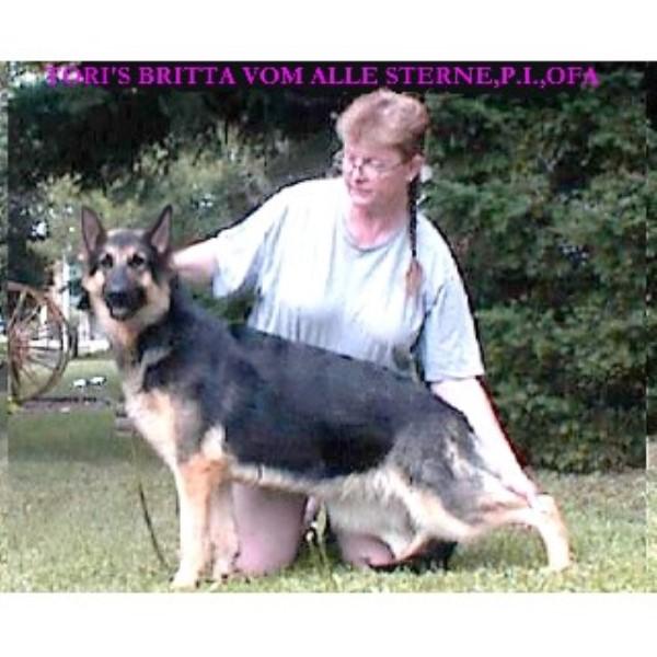 German Shepherd Club Virginia Beach