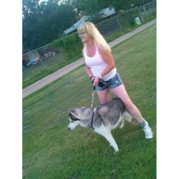 Kelly, Siberian Husky ...