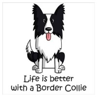 Border Lovers Border Collies