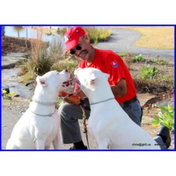 Dog Kennels Birmingham Alabama