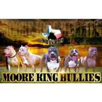 Moore King Bullies