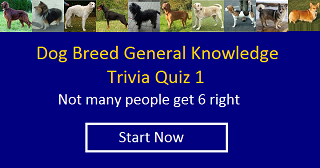 General Knowledge Trivia 1