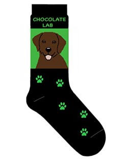 Chocolate Labrador Retriever Novelty Dog Breed Adult Socks
