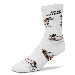 Jack Russell Terrier Poses Socks for Adult (White), Medium