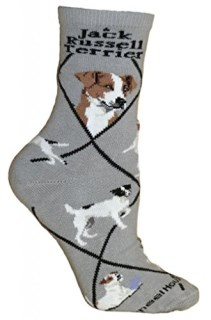Jack Russell Terrier Gray Dog Socks 9-11